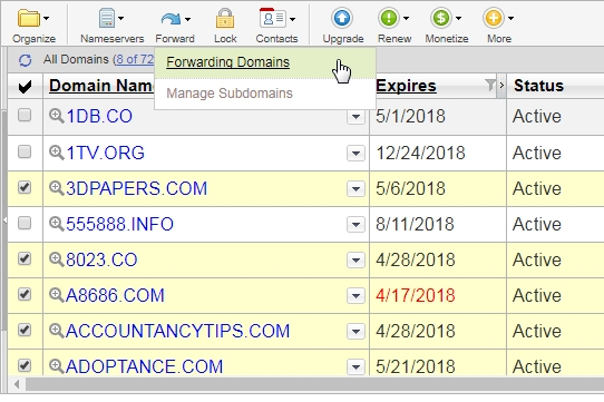 Godaddy example: select necessary domains to forward page screenshot